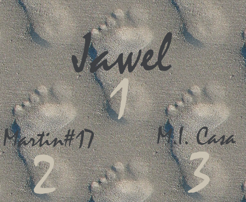 1: Jawel, 2: Martin#17, 3: M.I. Casa